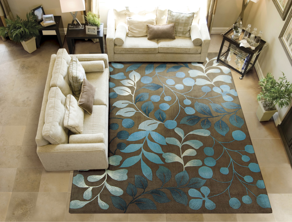 how to clean shag rug at home