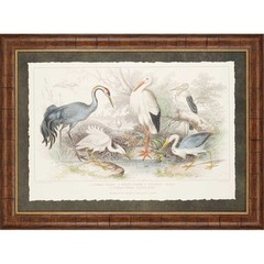 Buy Paragon Birds II 46x34 Framed Wall Art  on sale online