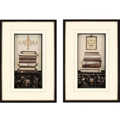 Buy Paragon Book Story 21x30 Framed Wall Art (Set of 2) on sale online