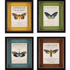 Buy Paragon Botanical Butterfly 12x14 Framed Wall Art (Set of 4) on sale online