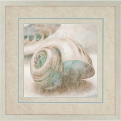 Buy Coastal Gems II 32x32 Framed Wall Art  on sale online