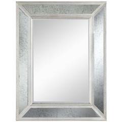 Buy Cooper Classics Daniella 40.25x31 Mirror in Antique Silver and Glass on sale online