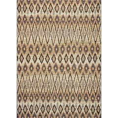 Buy Couristan Easton Area Rug in Multicolor on sale online