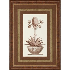 Buy Paragon Sepia Potted Pineapple I 34x46 Framed Wall Art  on sale online