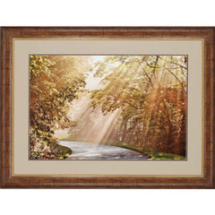 Buy Paragon The Winding Road Framed Wall Art on sale online