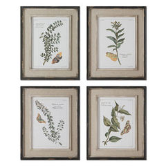 Buy Uttermost Butterfly Plants 21x17 Rectangular Framed Art (Set of 4) on sale online