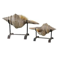 Buy Uttermost Conch Shell Sculpture (Set of 2) on sale online