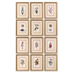 Buy Uttermost Flower of The Month 18x14 Framed Wall Art (Set of 12) on sale online