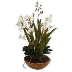 Buy Uttermost Moth Orchid Planter Floor Vase on sale online