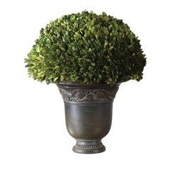 Buy Uttermost Preserved Boxwood Globe Floor Vase on sale online