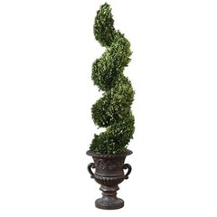 Buy Uttermost Preserved Boxwood Spiral Topiary Floor Vase on sale online