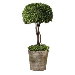 Buy Uttermost Preserved Boxwood Tree Topiary Floor Vase on sale online