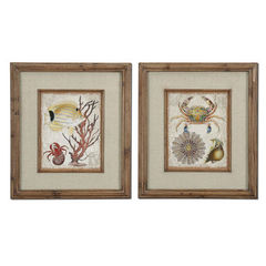 Buy Uttermost Tropical Waters 32x28 Rectangular Framed Art (Set of 2) on sale online