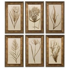 Buy Uttermost Wheat Grass 24x14 Wall Art I, II, III, IV, V, VI (Set of 6) on sale online