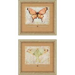 Buy Paragon Vintage Butterflies 20x18 Framed Wall Art (Set of 2) on sale online