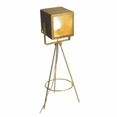Buy Yosemite Home Decor 1 Light Floor Lamp in Brass and Mango Wood on sale online