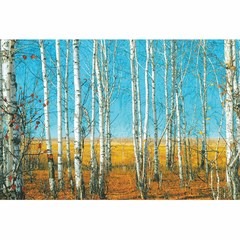 Buy Yosemite Home Decor Serenity Woods 47x32 Wall Art on Glass on sale online