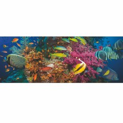 Buy Yosemite Home Decor Under Water Fish I 71x28 Rectangular Wall Art on sale online